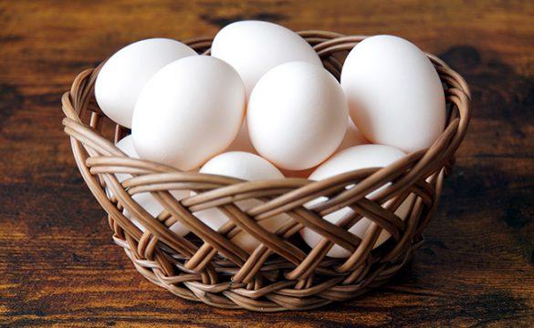 経営者の資産運用術「卵を一つのカゴに盛ってはいけない」…